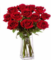 12  Premium Rose (Long Stem) & Vase