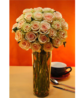 Two Dozen Pink Roses With a Vase