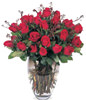 24 Stems Red Rose With a Vase