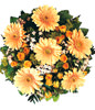 6 Orange Gerbera, 18 Orange Rose