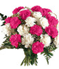 12 Pink Carnations and 12 White Carnations