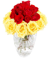 24 Red And Yellow Roses In Glass Vase
