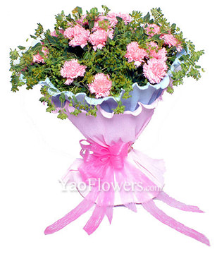 26 pink carnations