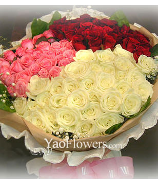 99 roses with 3 color and Top class