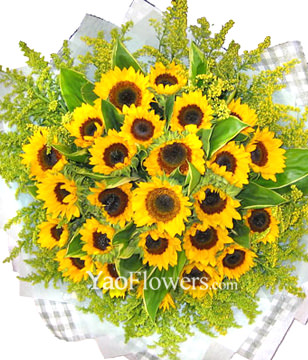 26 Sunflowers