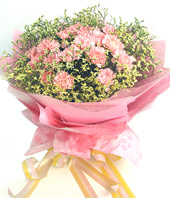 22 pink carnations