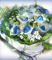 11 Blue Roses
