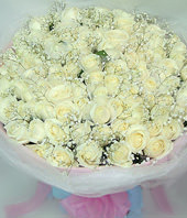 99 Pure white roses
