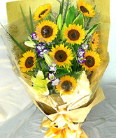 10 Sunflowers,Yellow lilium