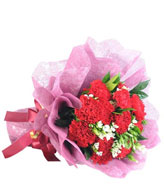 Bouquet of 12 Red Carnations