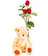 3 Roses In Red With Plush Bear