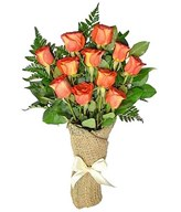 A dozen orange roses arrive perfectly arranged
