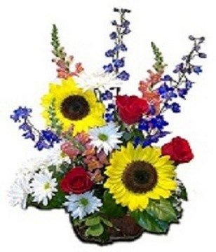sunflowers, snapdragons, red roses and striking asters presented with fresh greens in an attractive basket with special floral foam