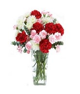 combination of Red Carnations, White Cushion Poms and Pale Pink Mini Carnations