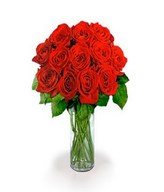 Bouquet of 12 Extra Long Stemmed Red Roses