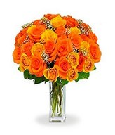 36 Long Stem Orange Roses in a Bouquet