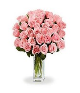 Bouquet of 36 Long Stem Pink Roses