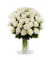 Bouquet of 36 Long Stem White Roses