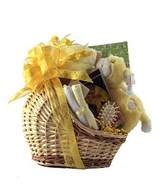 adorable basket for the lil one