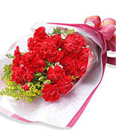 10 Stem of red Carnations in Bouquet