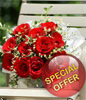 12 Red Roses Posy