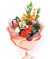 Carnations, 7 flowers, flower, narcissus of platycodon grandiflorum Lily and sandersonia aurantiaca, Tang cotton