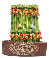 FENGSHUI PLANTS,GONG XI FA CAI PLANTS,Wealth opened games bamboo. 30CMX30CM