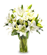 Pure Emotion: Three white lilies & gerberas