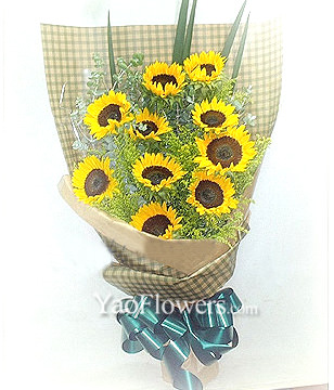 10 Sunflowers