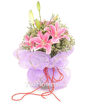 3 Pink Lilium with crystal grass