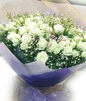 101 White or Pink roses