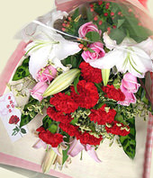 10 Red carnations,3 Pink lilium