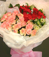 A dozen of carnations with double color,20 red carnations
