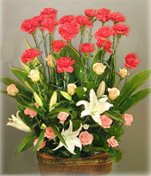 20 Carnations with Top class,20 roses,5 lilium
