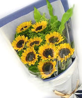 9 Sunflowers