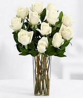 One Dozen Long Stemmed White Roses