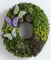 Butterfly Succulent Wreath