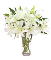 6 White Lilies,Green Leaves,Vase included