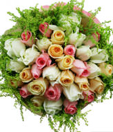 11 pink roses, 11white roses, 11 champagne roses