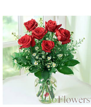 6 Red roses,Vase included