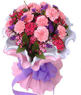 Pink carnation 16, pink plum, forget me not