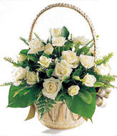 22 white roses, green leaf, oriole