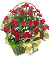 Red carnation 36, the serissa fetida is plentiful, the green leaf is plentiful,Basket included