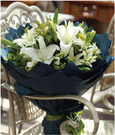 11 lilies
