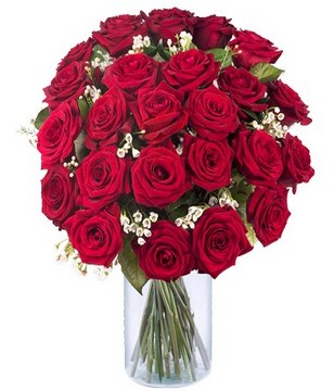 24 premium red roses with gypsophila and matching greenery