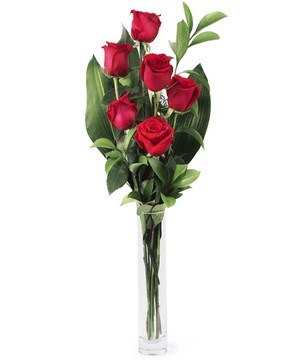 six premium red roses and complementary greenery