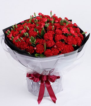 99 Red Carnations