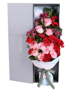 11 Diana Roses and 11 Red Carnations in a Box