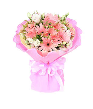 18pink flameray gerbera mix with Platycodom grandiflorum