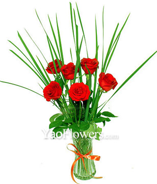 6 Red roses with baby's breath